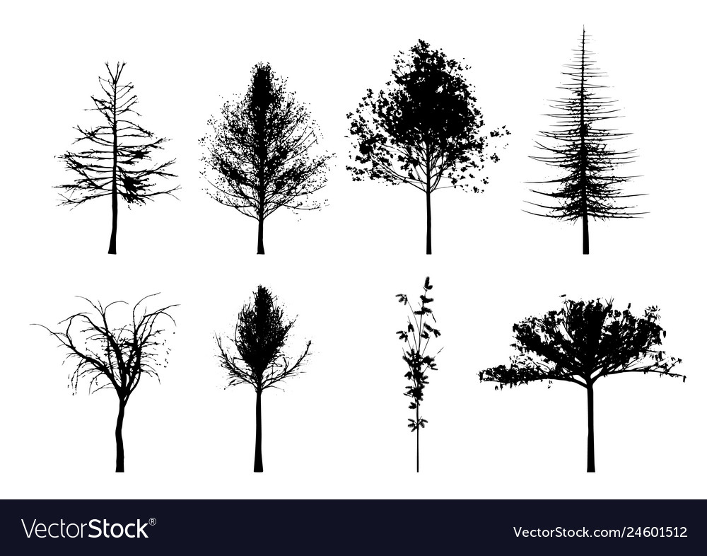 Eight trees silhouettes in black and white