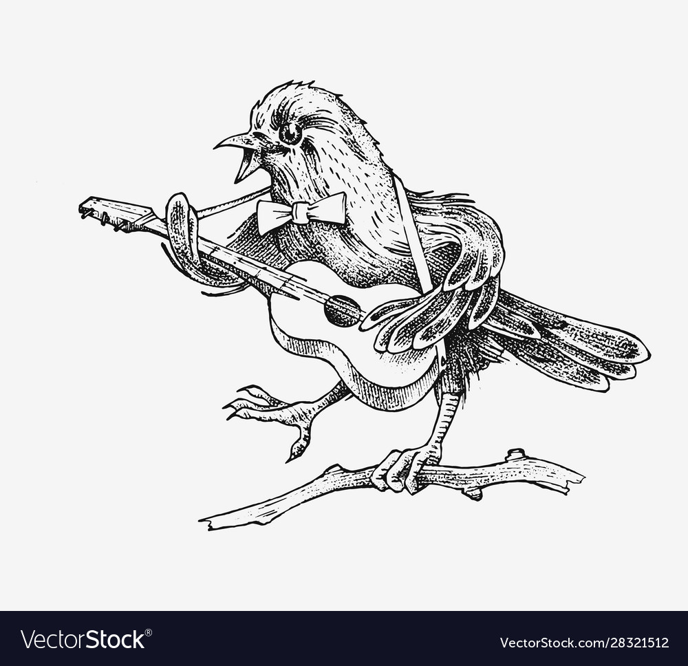 Sparrow bird plays guitar and sings in a