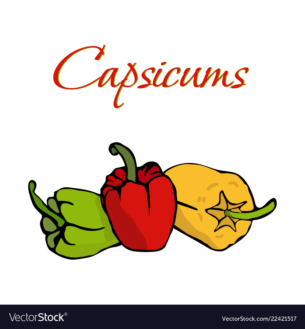 Tasty veggies capsicums