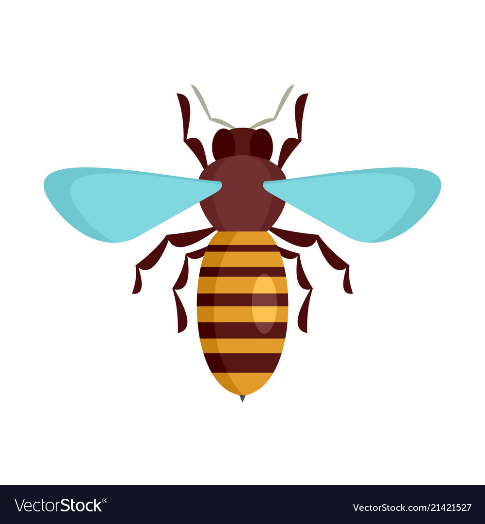 Bee insect icon flat style