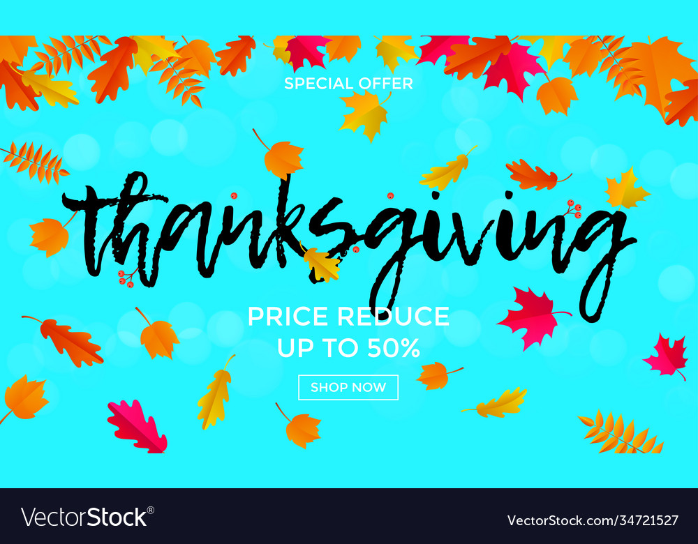 Thanksgiving sale poster autumn promo discount