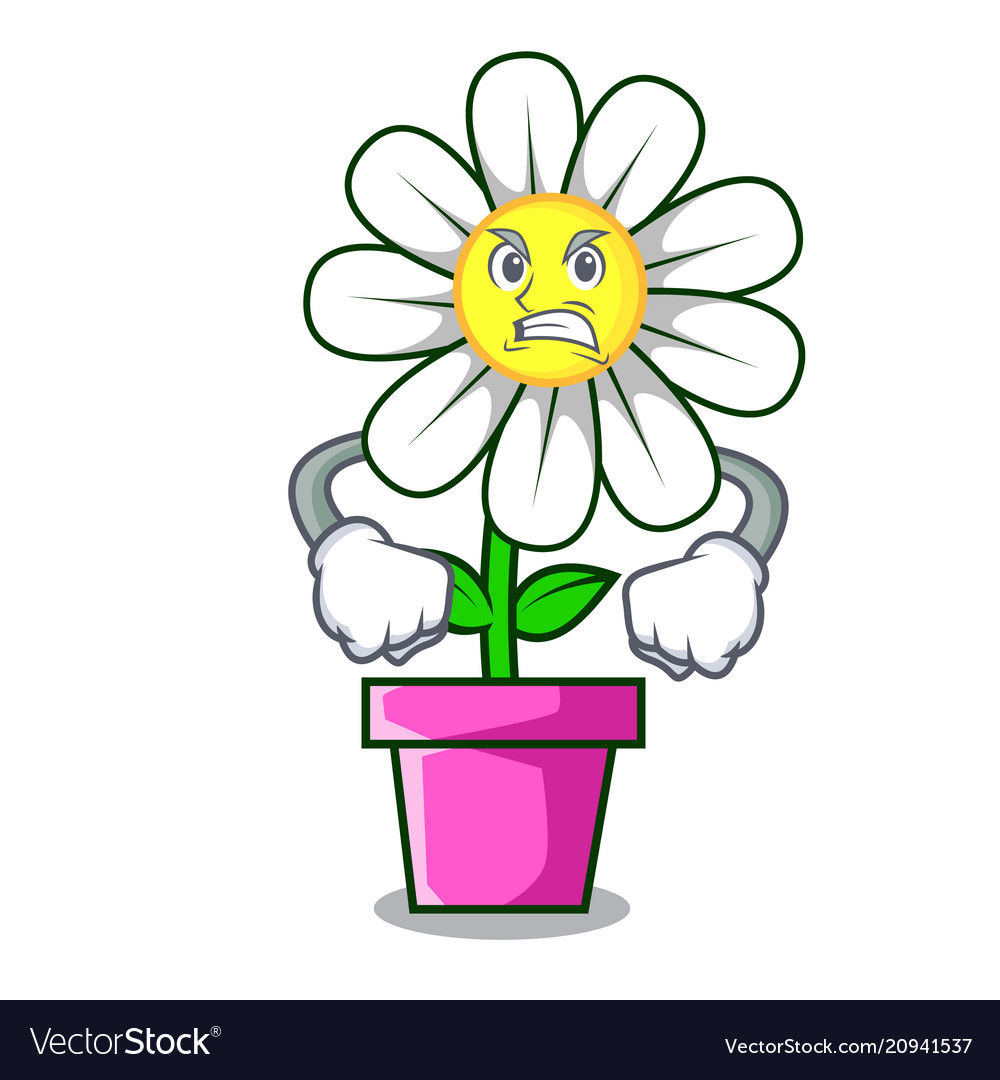 Angry Daisy Flower Mascot Cartoon Royalty Free Vector Image