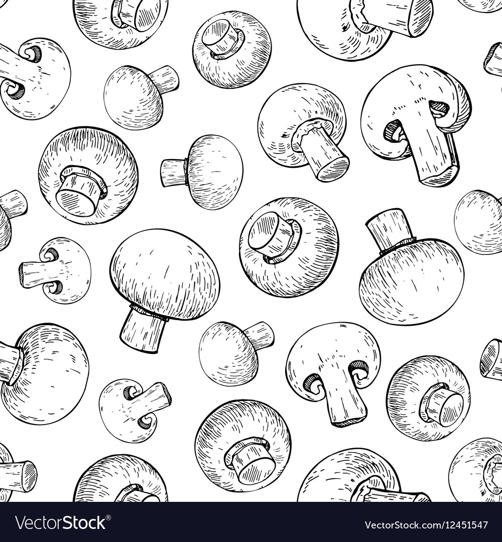 Champignon mushroom hand drawn seamless vector image