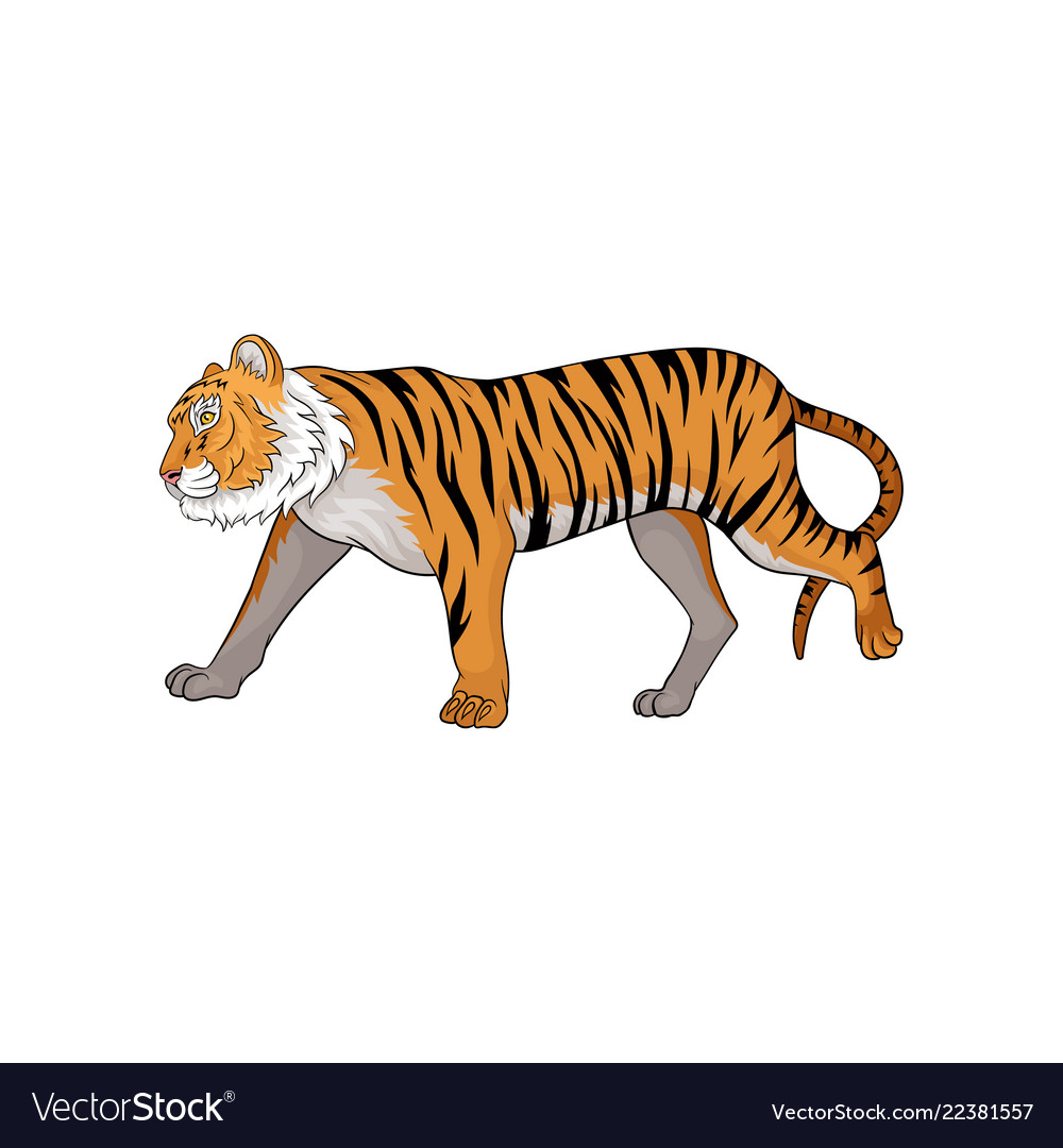 Running tiger side view