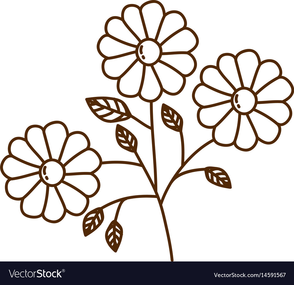 Brown Silhouette With Set Daisy Flowers Royalty Free Vector Daisy flower transparent images (1,445). vectorstock