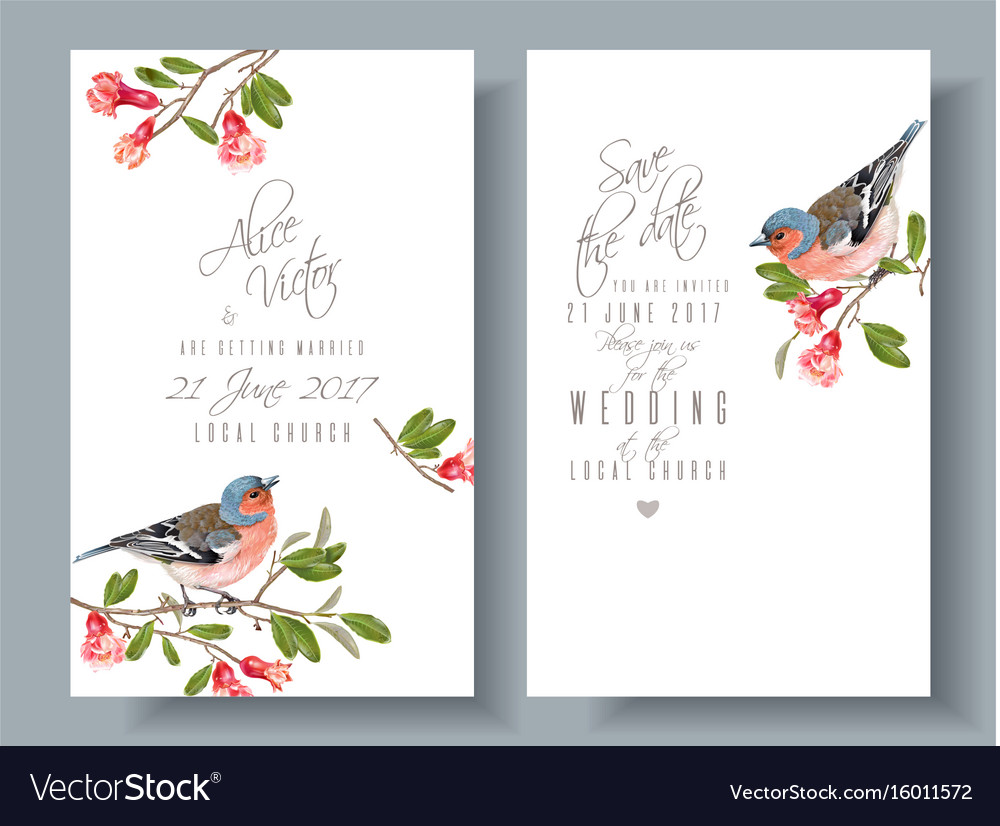 Finch pomegranate branch cards