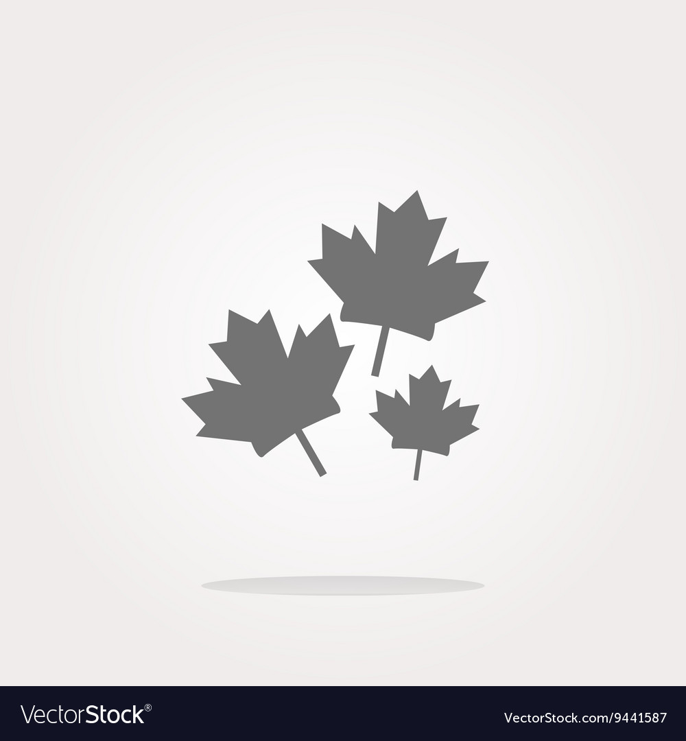 Maple leaf icon on web button Web Icon Art vector image
