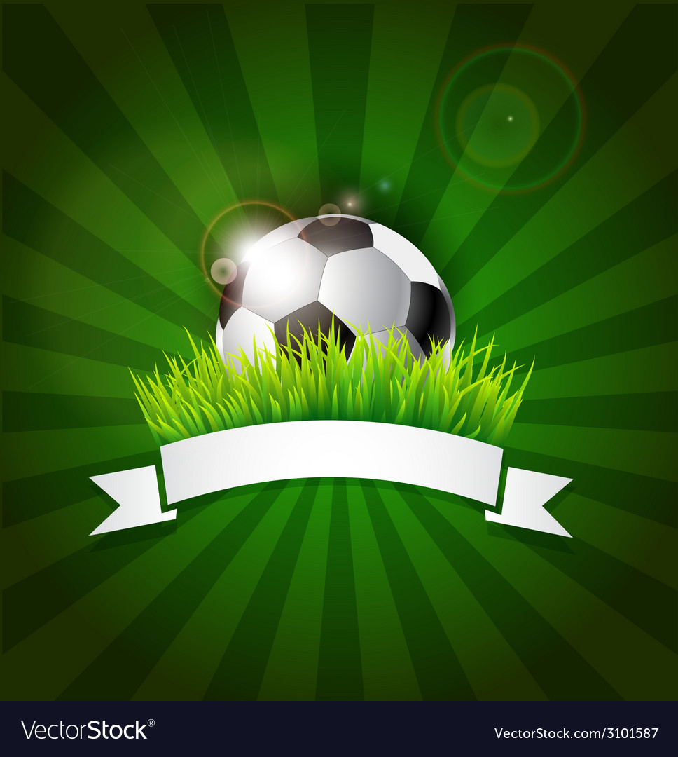 Soccer ball in grass with banner vector image