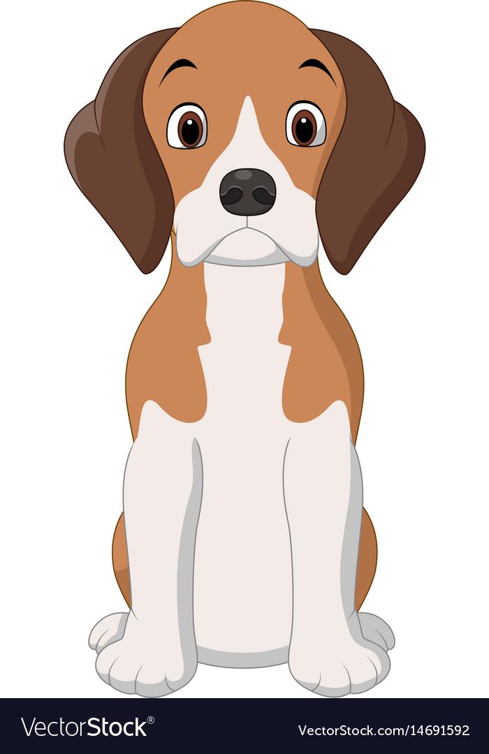 Cartoon happy beagle dog sitting vector image