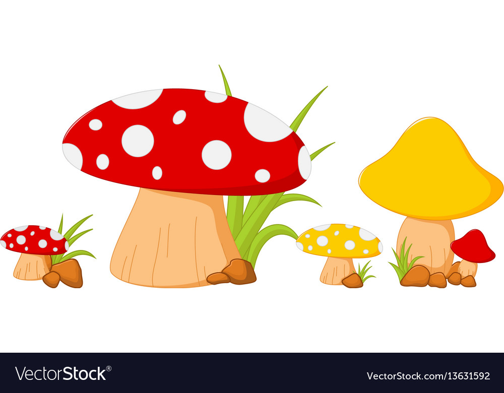 Red mushroom with grass