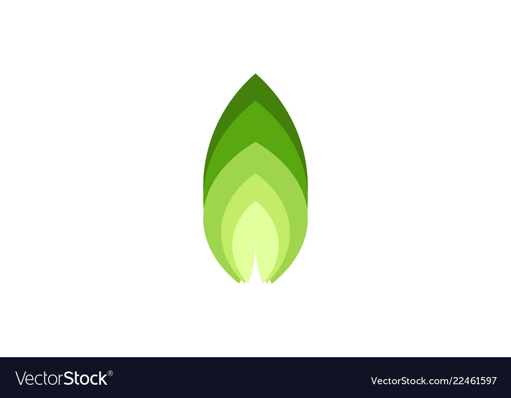Abstract green leaf nature logo