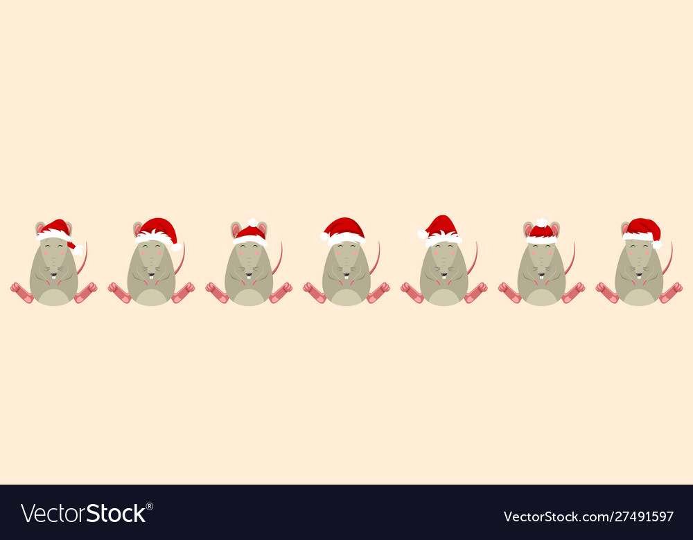 Rats santa claus in hats funny christmas
