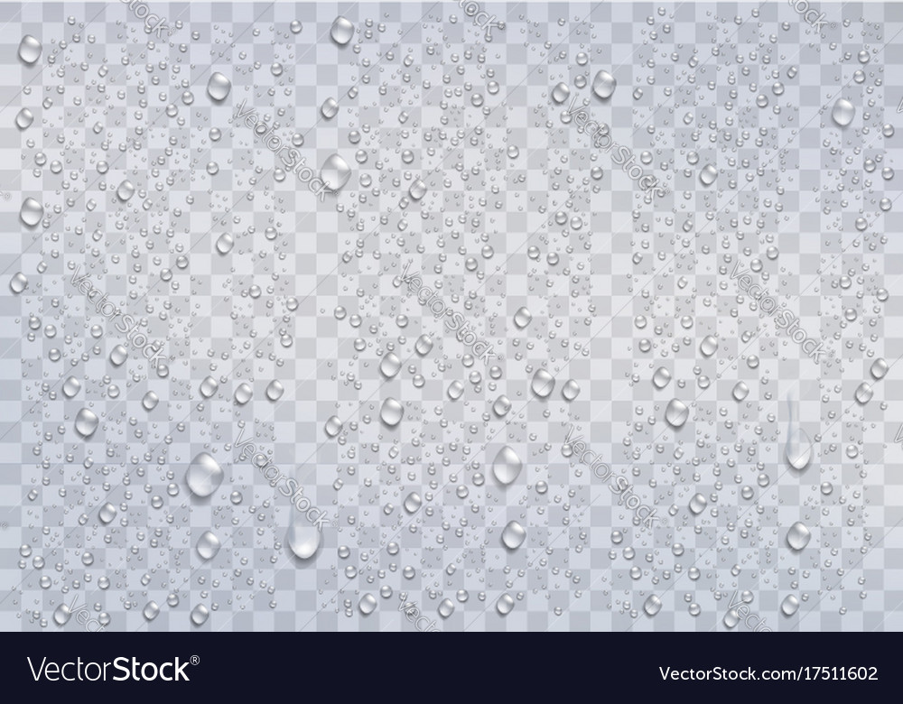 Realistic rain drops on the transparent background