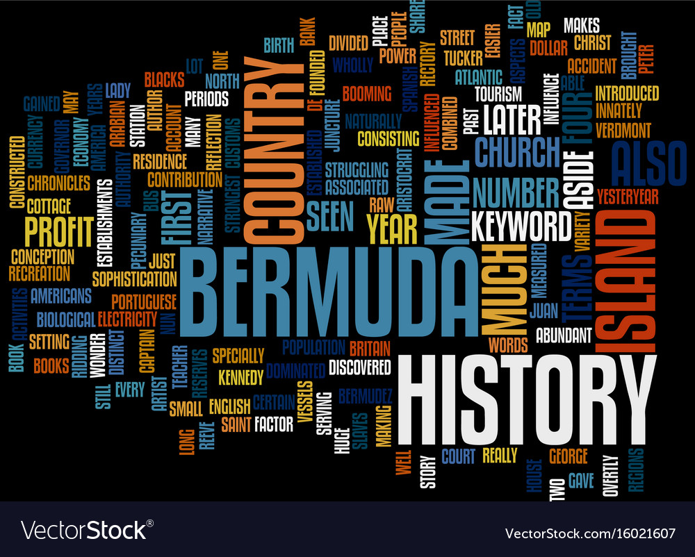 Bermuda hotels text background word cloud concept vector image