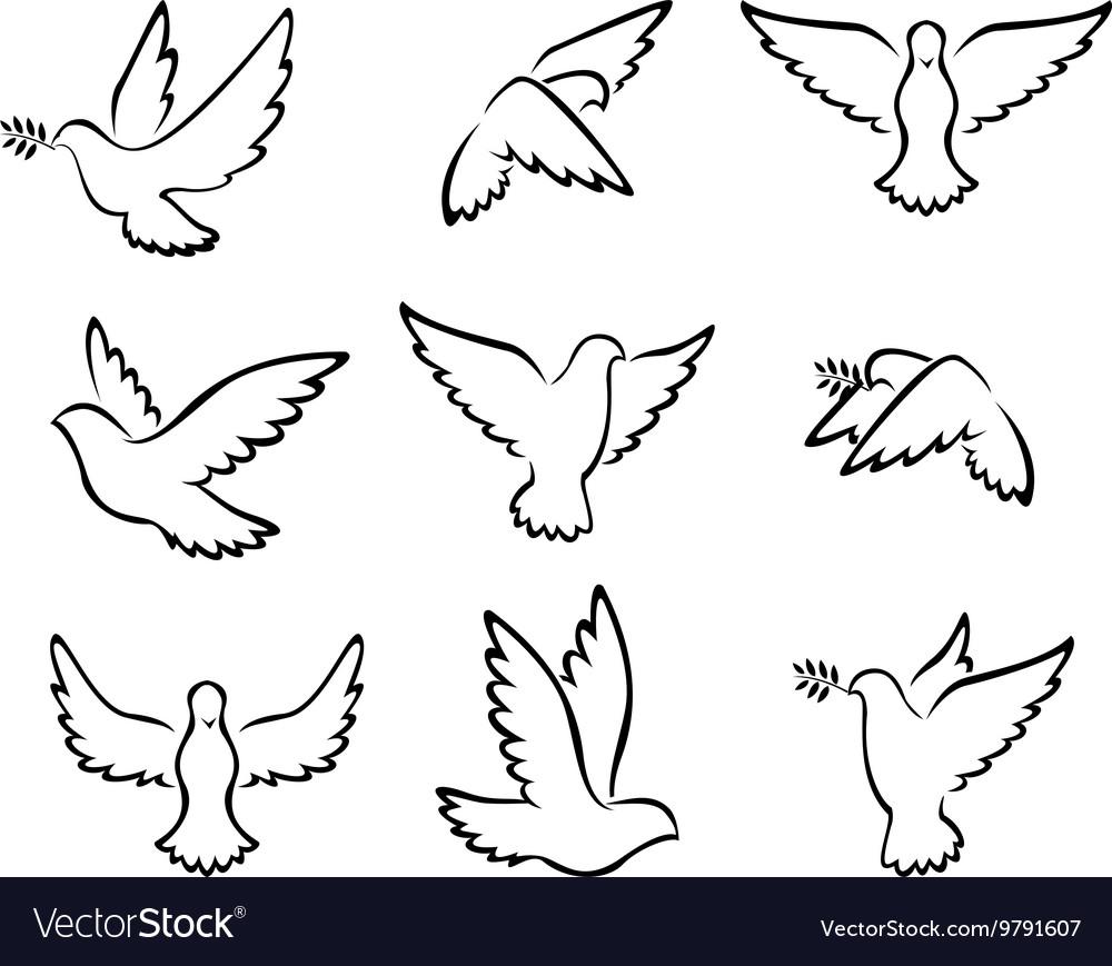 Collection of Dove birds logo for peace concept an
