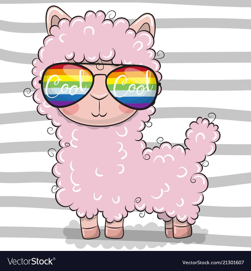 Cute lama with sun glasses