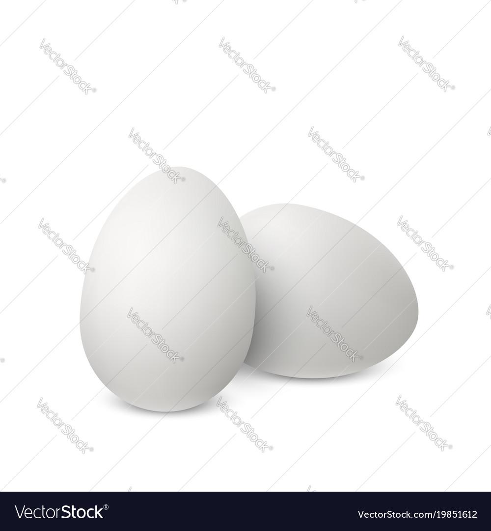 White realistic eggs