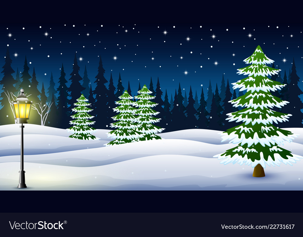 Cartoon of winter night background with pine trees