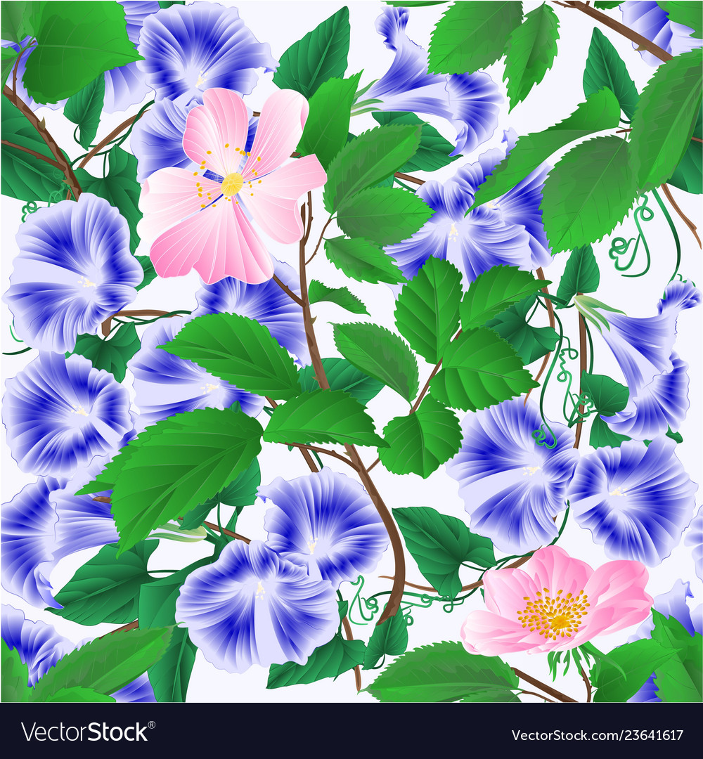 Seamless texture morning glory and wild roses