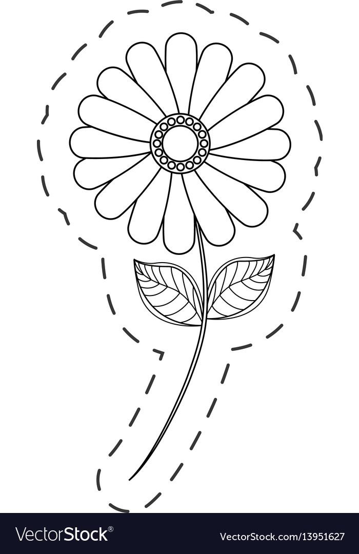 Flower daisy floral decoration cut line vector image