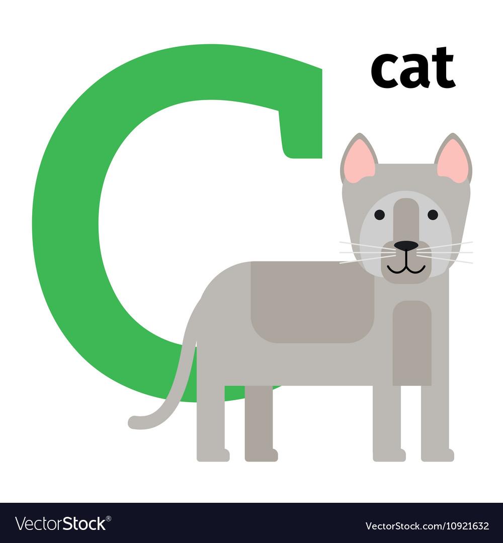 english animals zoo alphabet letter c royalty free vector