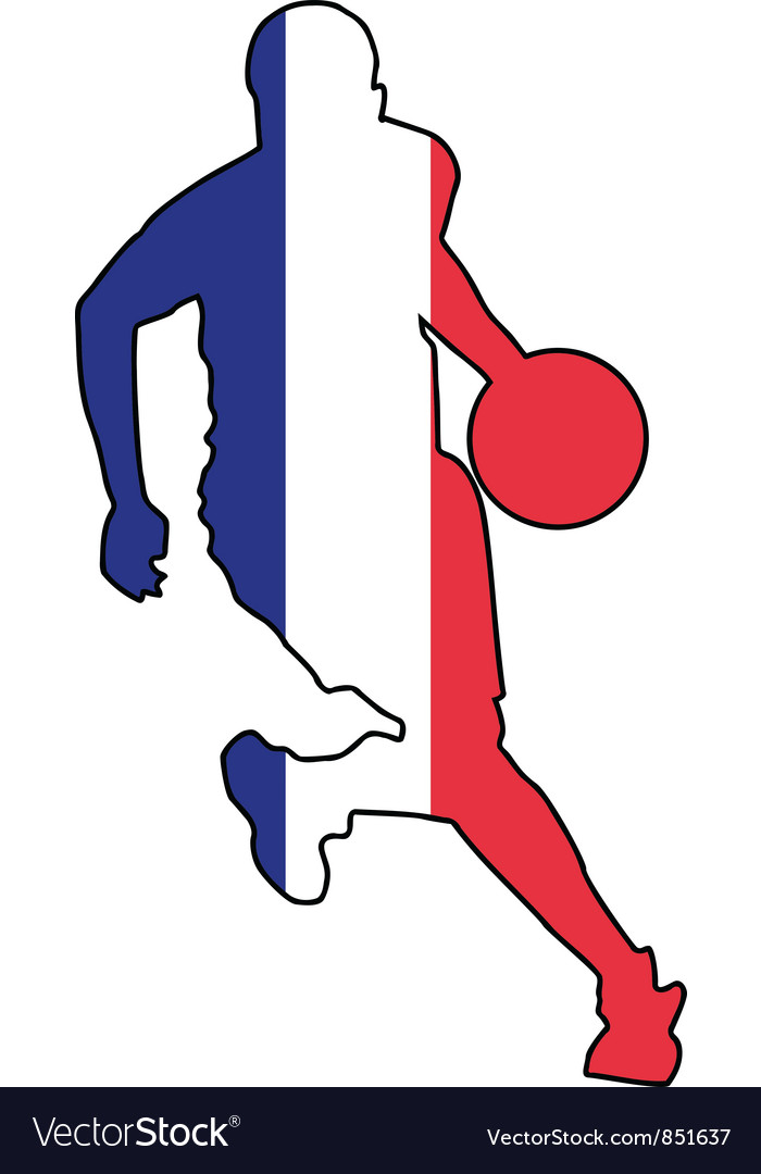 Basketball colors of France vector image