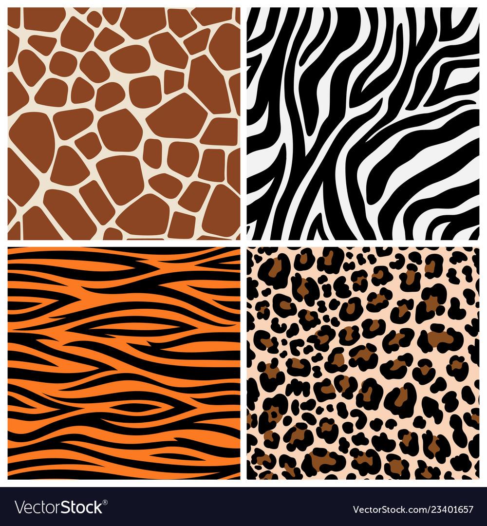 Zebra giraffe and leopard patterns