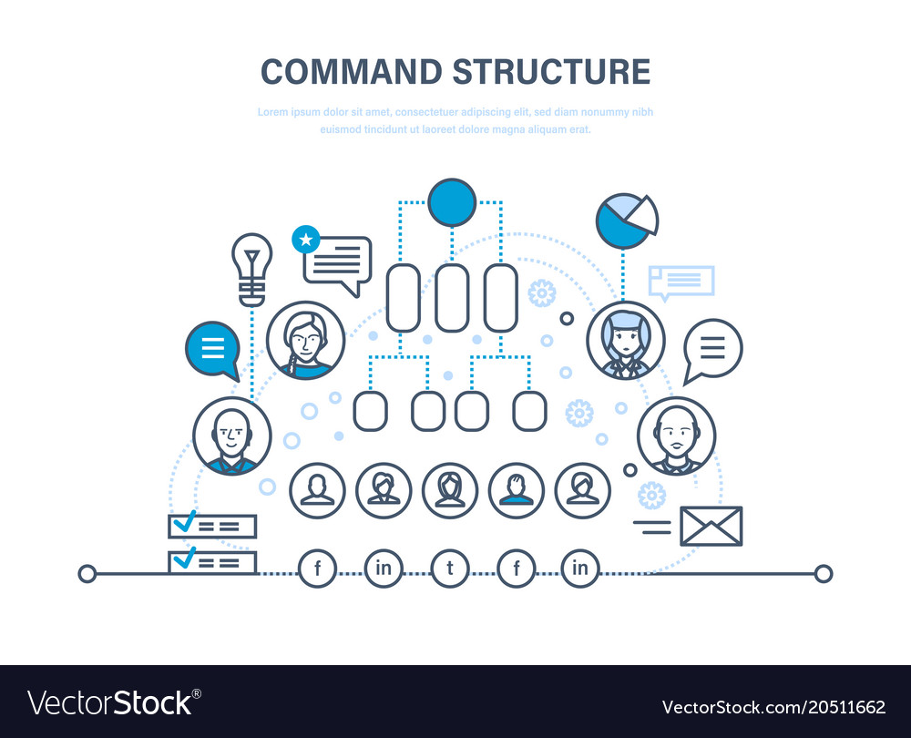 Command structure business hierarchy teamwork vector image