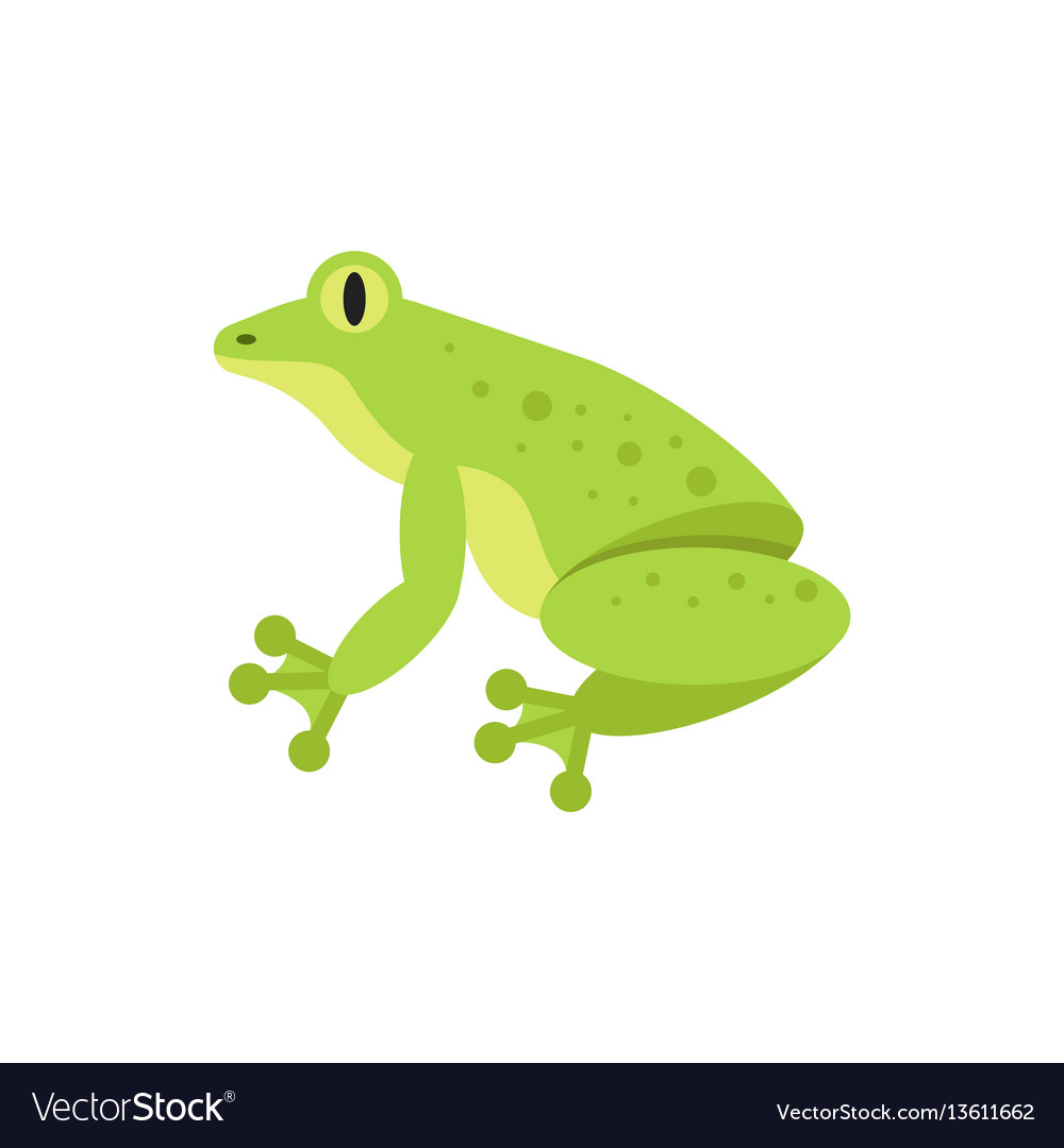 Flat style of frog