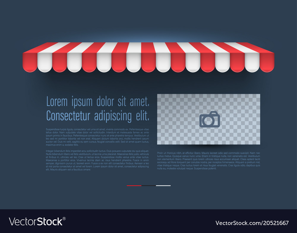Store awning with retro banner vector image