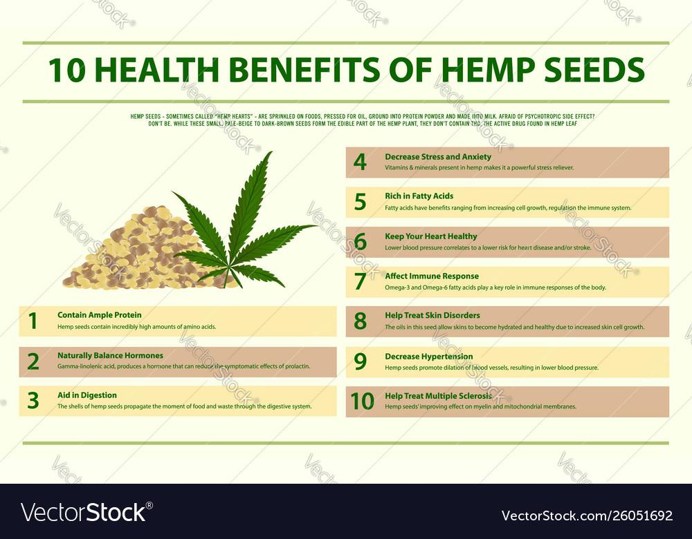 10 health benefits hemp seeds infographic