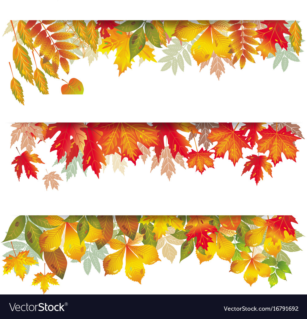 Seasonal banners of autumnal leaves