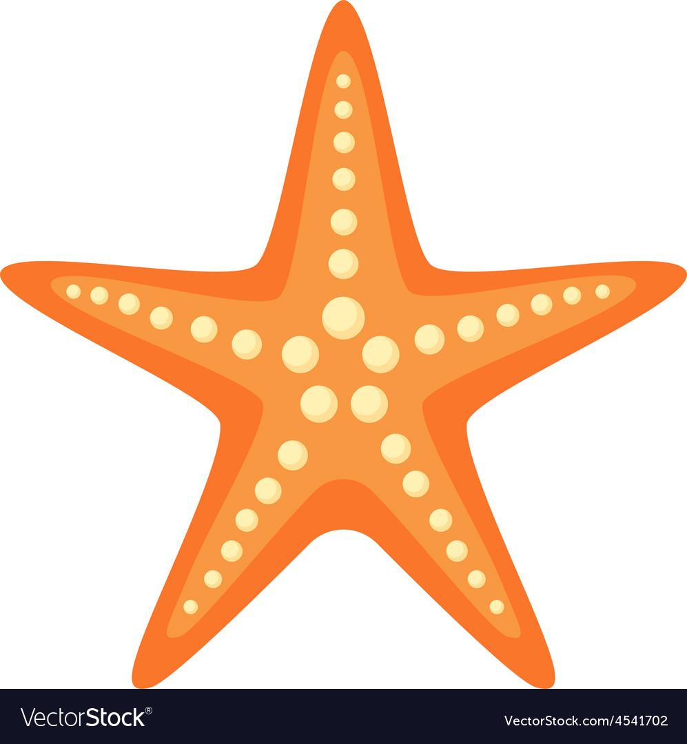 sea star royalty free vector image vectorstock rh vectorstock com starfish vector file starfish vector free download