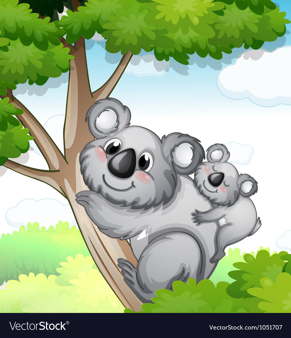Bears in nature