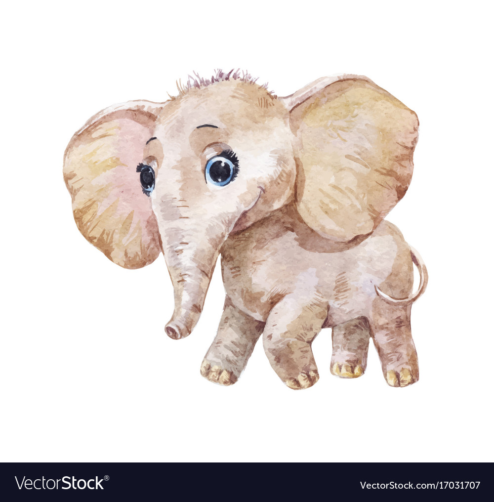 little cute elephant watercolor royalty free vector image