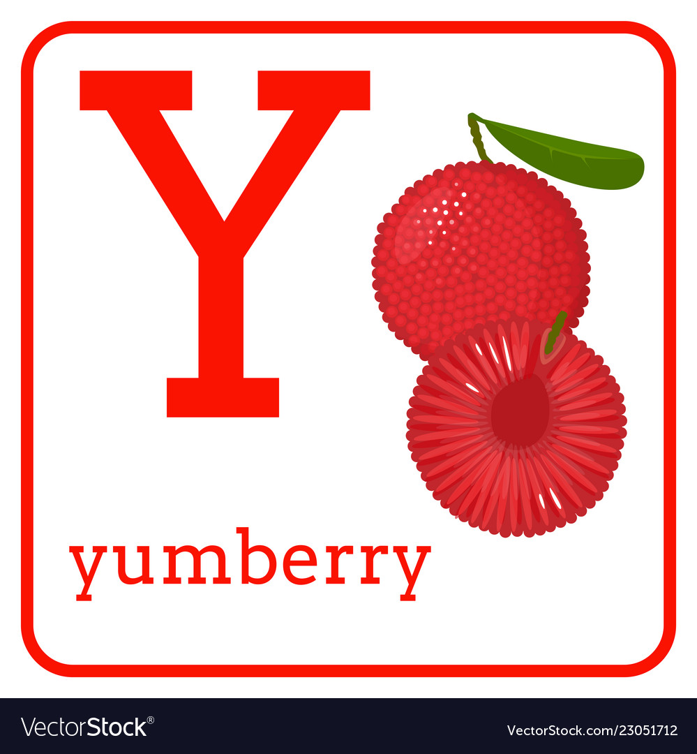 Cute Fruits Letter Y Yumberry Vector Image