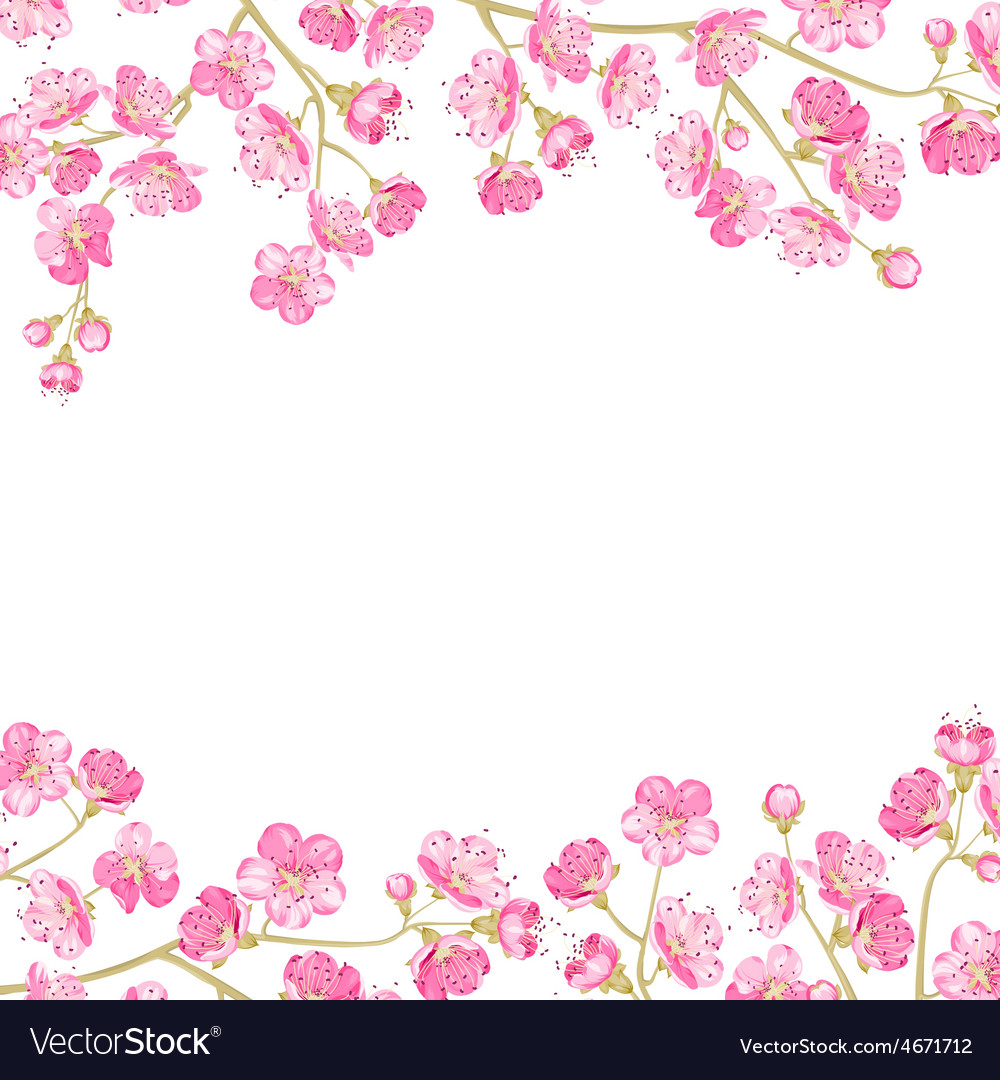 spring flowers wallpaper royalty free vector image