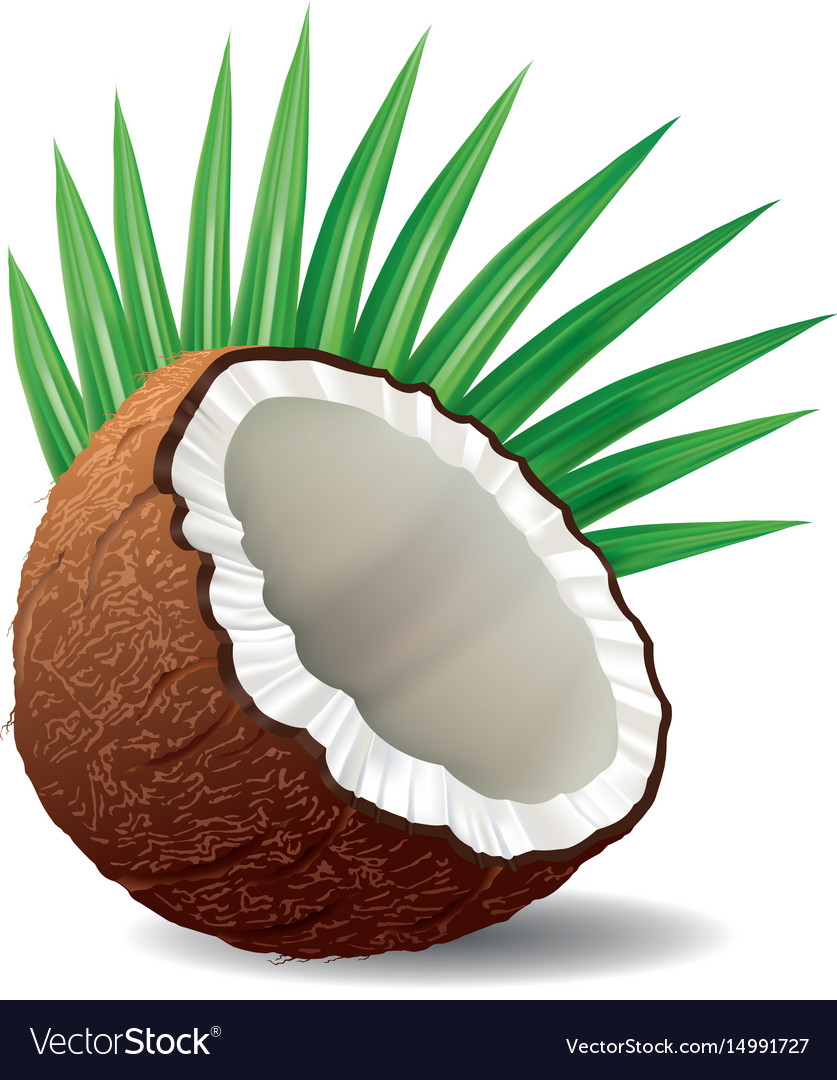 Coconut with leaves isolated on white