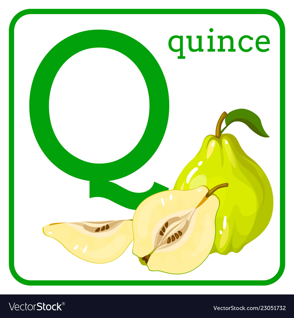 An alphabet with cute fruits letter q quince
