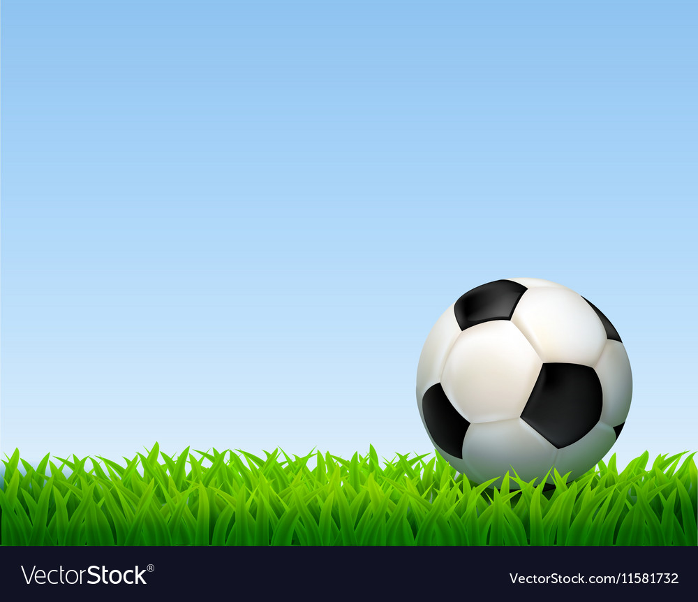 Football Ball Composition vector image