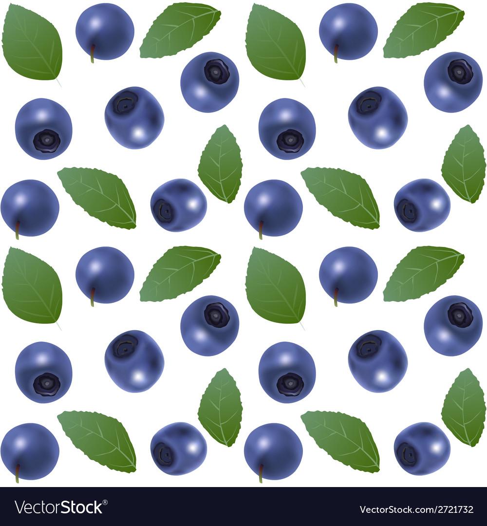 Seamless blueberry background