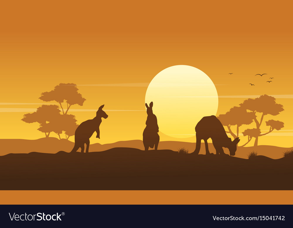 Silhouette kangaroo landscape beauty collection