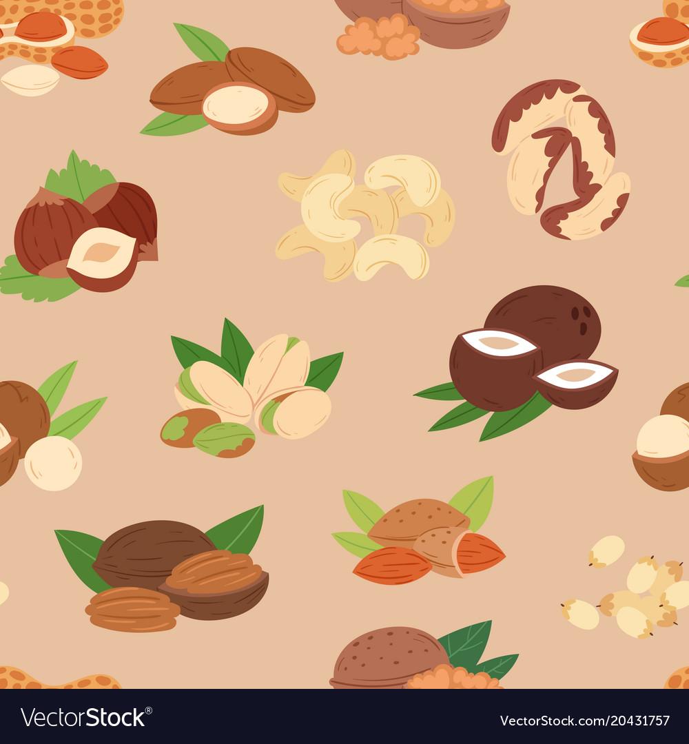 Nut nutshell of hazelnut or walnut and