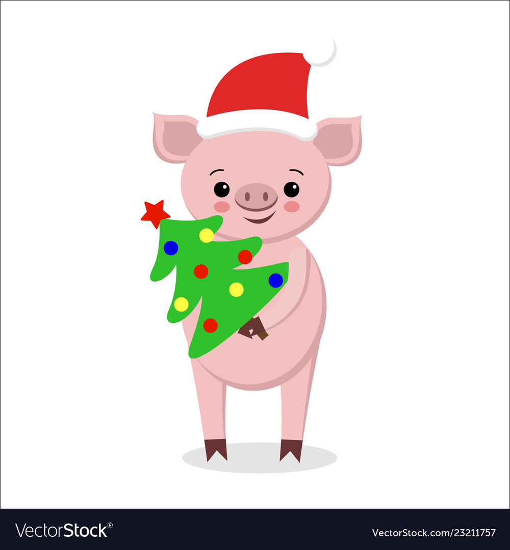 Postcard with funny pig in santa hat scarf with