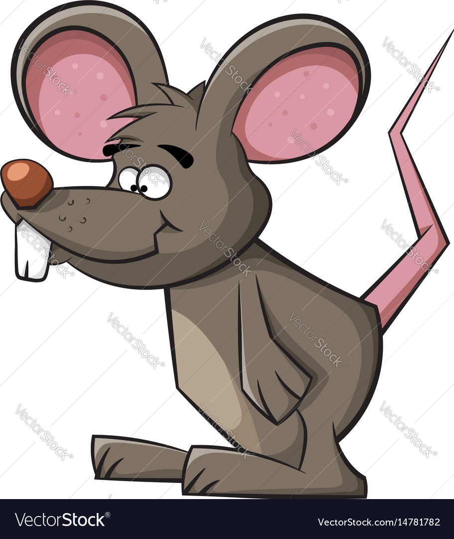 Cute mouse funny rat