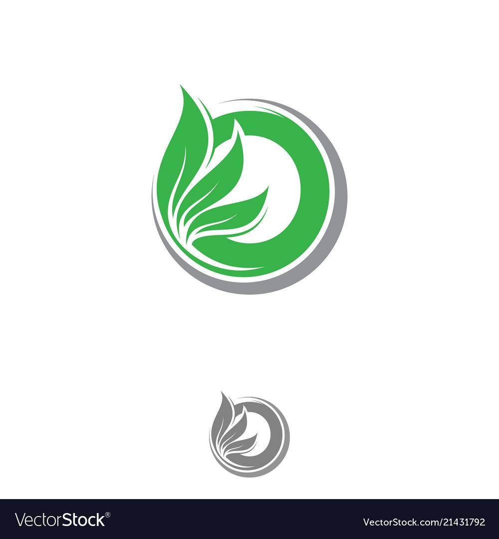 Letter o leaf