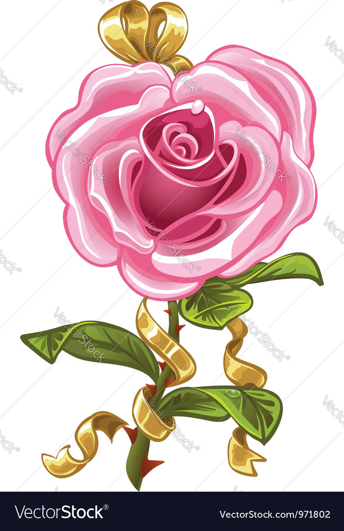 pink rose in the shape of heart royalty free vector image
