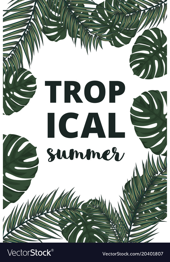Summer banner with palm leaves