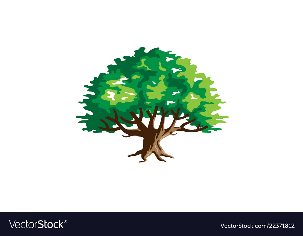 Green creative argania tree logo