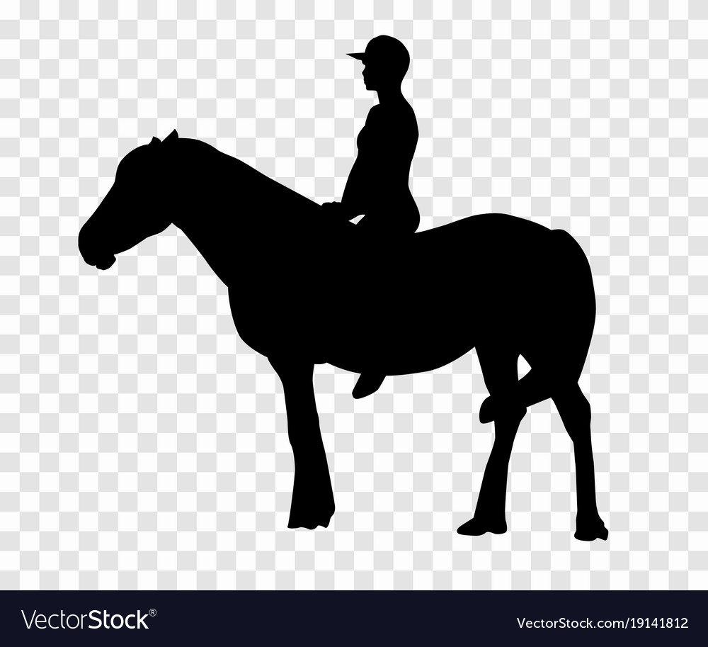Sticker to car silhouette rider on horse expert